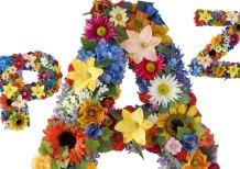 paz-flores